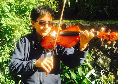 Galeria violin1